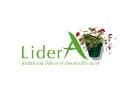 Logo Lidera aaff